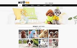 宠物店网站案例